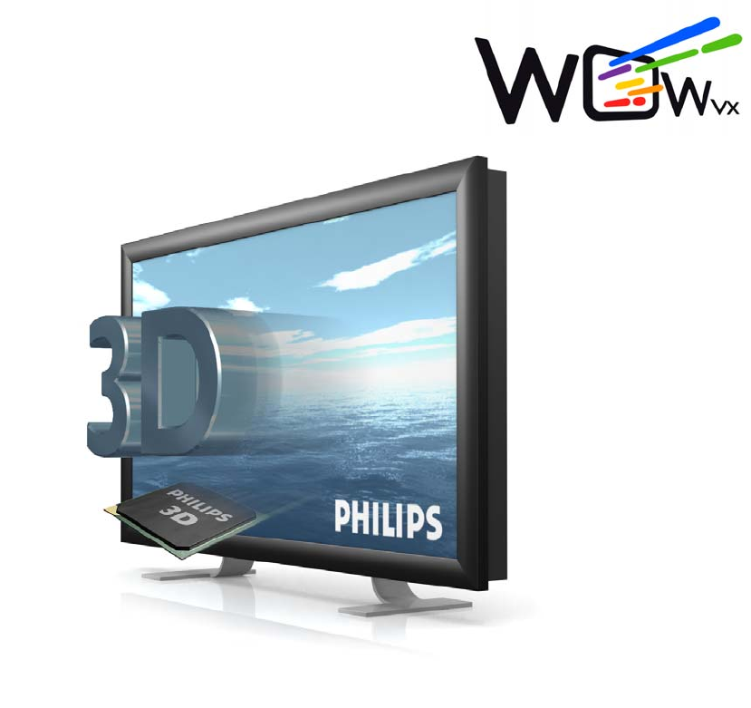 Philips Flat Panel Television 42-3D6W02/00 User Guide