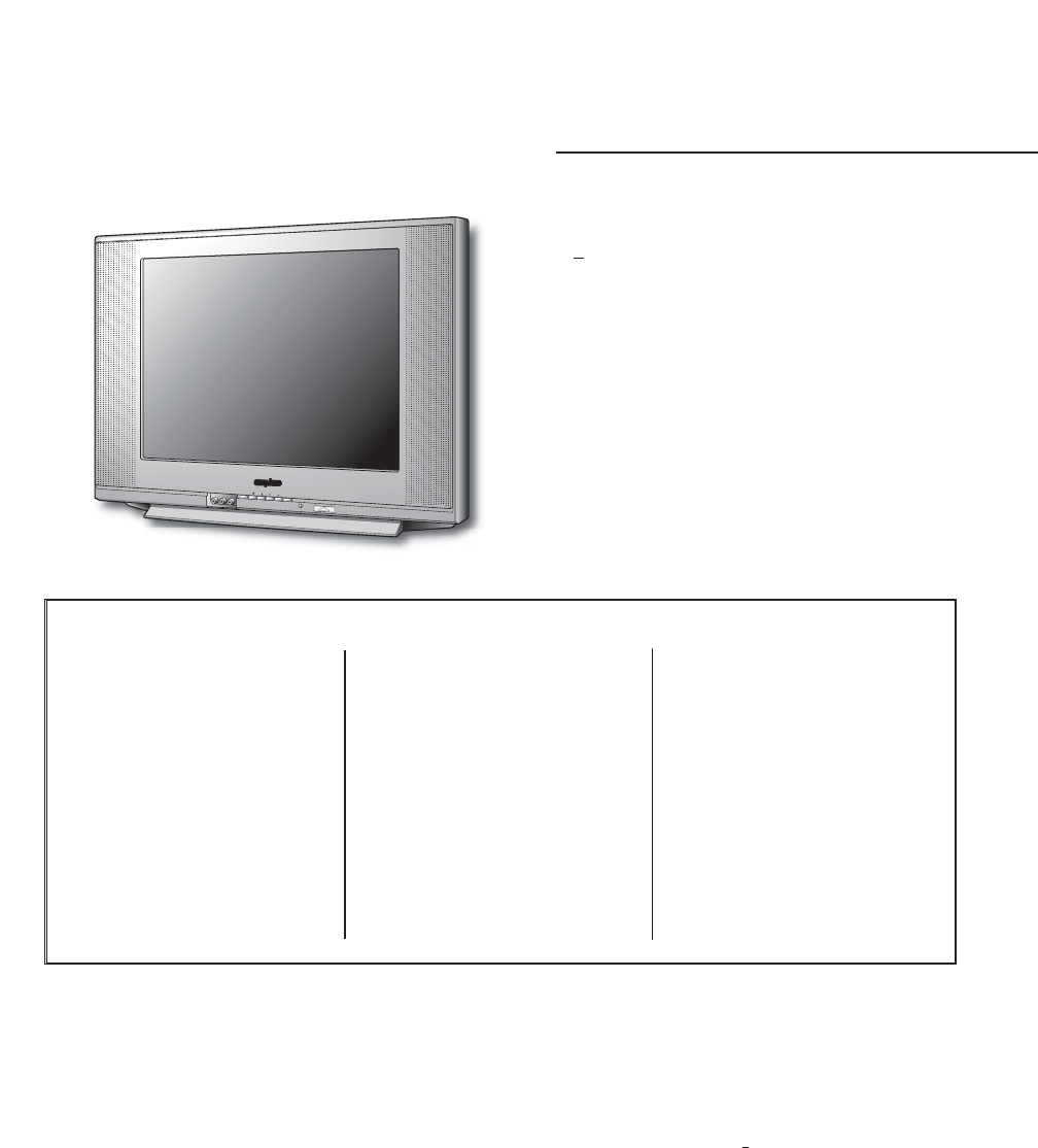 Sanyo CRT Television DS20425 User Guide | ManualsOnline.com