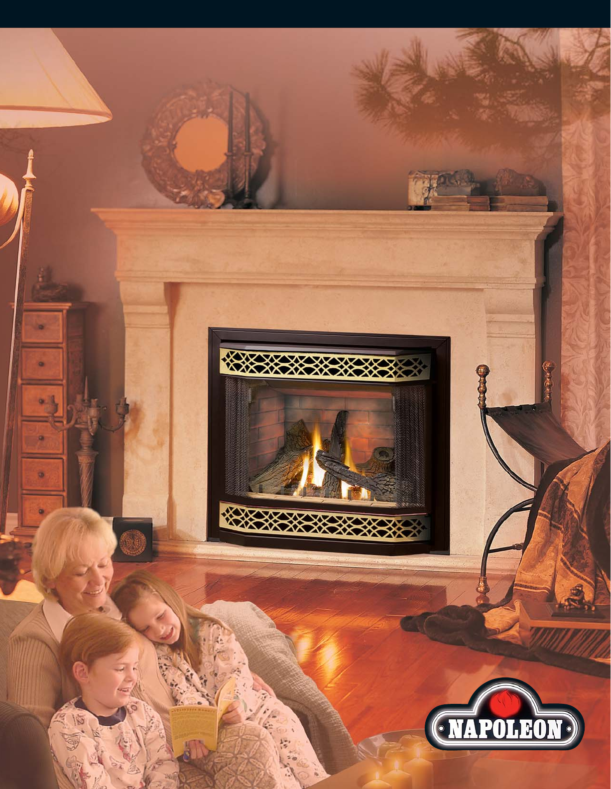 napoleon fireplace manual 28 images napoleon solid fuel