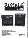 Stereo Amplifier Rumble 100 (V3)
